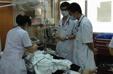 HCM City to open course on stroke treatment
