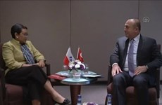Indonesia, Turkey enhance cooperation