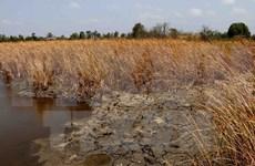 Workshop seeks sustainable measures against climate change