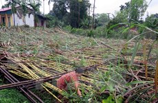 Mountainous provinces suffer from extreme weather events