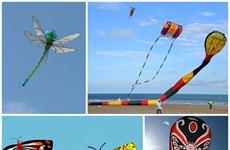 Giant kites soar up into Hung Yen province's sky