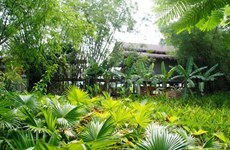 Sustainable eco-tourism branched out in Quang Nam province