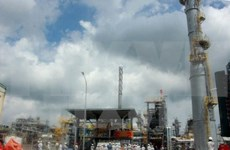 Vietcombank, Binh Son refinery company step up cooperation