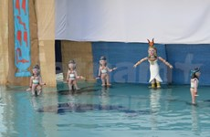 Vietnamese water puppetry comes to Egypt