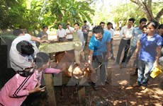 Farmers ease shortage of vocational teachers