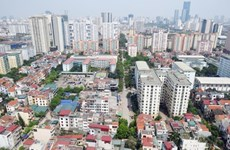 Domestic real estate to see 'hot' development