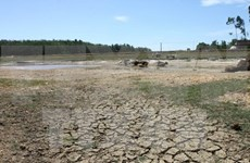 Farmers supported to cope with drought