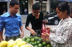 HCM City: pilot projects benefit street traders
