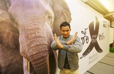 """WWF launches """"Stop Buying Ivory"""" campaign in Thailand"""