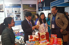 Vietnam shows off flagship products at Africa's biggest trade fair