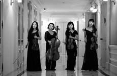 String quartet to play romantic music in Hanoi