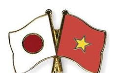 Japan's Self Defence Force delegation on Vietnam visit