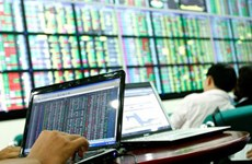 VN stocks down after strong gains