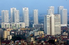 Local property market grows: experts