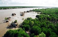 Ca Mau keen on forest development