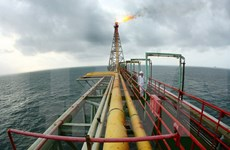 PetroVietnam to boost crude oil production with additional drilling