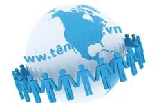 Vietnamese enterprises use over 200,000 .vn domain names