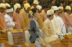 Myanmar state counsellor meets ethnic armed group representatives