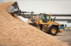Largest woodchip processing factory in Phu Yen starts operation