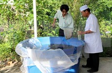Eight dengue fever prevention teams formed