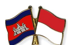 Cambodia, Indonesia broaden military cooperation