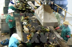 HCM City seeks sustainable solid waste management