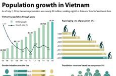 Population growth in Vietnam