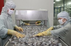 Minister suggests develop shrimp as national strategic product