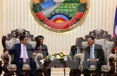 Vietnam, Laos Party organisation commissions look to push ties