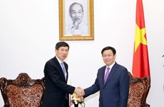 Vietnam requests more preferential capital from UNDP