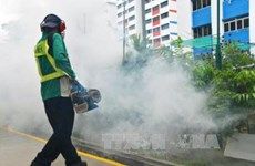 Singapore discovers more cases of Zika virus