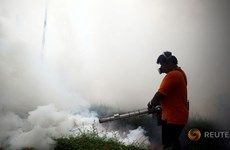 Thailand records around 200 Zika virus cases