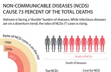 Non-communicable diseases on rise trend