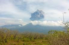 Indonesia evacuates over 1,000 tourists after volcano eruption
