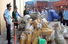 Two tonnes of suspected elephant tusks found at Sai Gon port