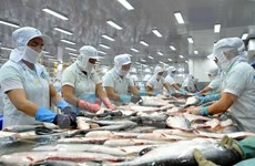 Fish exporters face difficulties in hitting year-end goal