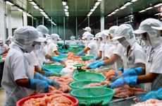 FTA expands trade cooperation opportunities for Vietnam, Russia