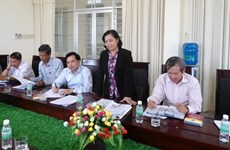 Fronts of Vietnam, Laos laud diversified cooperation