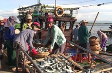 Thua Thien-Hue continues distributing compensation for fishermen