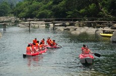 Fish death-affected central provinces helped with restoring tourism