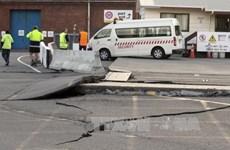 No Vietnamese at quake zone in New Zealand
