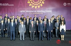 Vietnam ready for APEC events in 2017