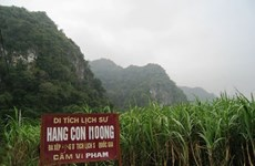 Special exhibition on Con Moong cave, nearby relic sites