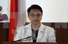 Indonesian minister holds bilateral meetings on AMM-48 sidelines
