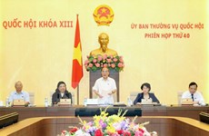 National Assembly's role in enforcement of int'l treaties examined