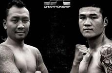 HCM City showcases boxing