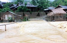 Downpours play havoc with Nghe An, Ca Mau, Kien Giang provinces