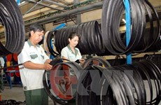 Binh Duong achieves over 2.5-billion-USD trade surplus