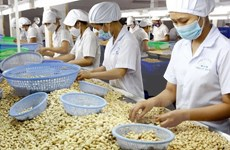 Agricultural production urged to keep up with market demand