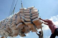 Rice exports see positive signs
